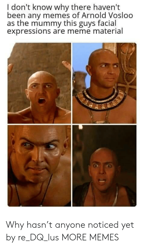 i dont know why: I don't know why there haven't  been any memes of Arnold Vosloo  as the mummy this guys facial  expressions are meme material Why hasn't anyone noticed yet by re_DQ_lus MORE MEMES