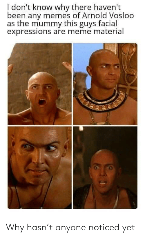 i dont know why: I don't know why there haven't  been any memes of Arnold Vosloo  as the mummy this guys facial  expressions are meme material Why hasn't anyone noticed yet
