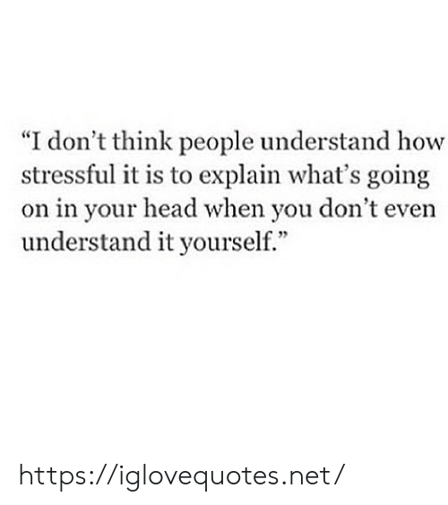"Head, How, and Net: ""I don't think people understand how  stressful it is to explain what's going  on in your head when you don't even  understand it yourself."" https://iglovequotes.net/"