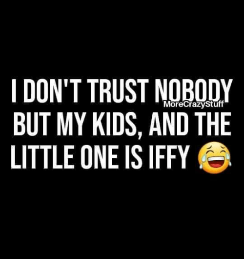Memes, Kids, and Trust Nobody: I DON'T TRUST NOBODY  BUT MY KIDS, AND THE  LITTLE ONE IS IFFY  MoreCrazyStuff