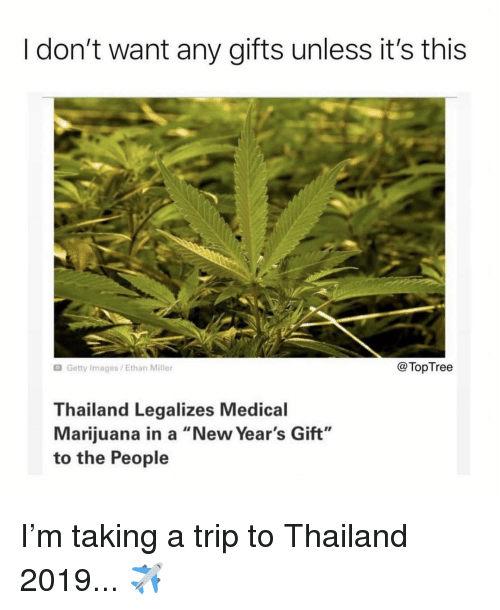 "Memes, Getty Images, and Images: I don't want any gifts unless it's this  Getty Images/Ethan Miller  @TopTree  Thailand Legalizes Medical  Marijuana in a ""New Year's Gift""  to the People I'm taking a trip to Thailand 2019... ✈️"
