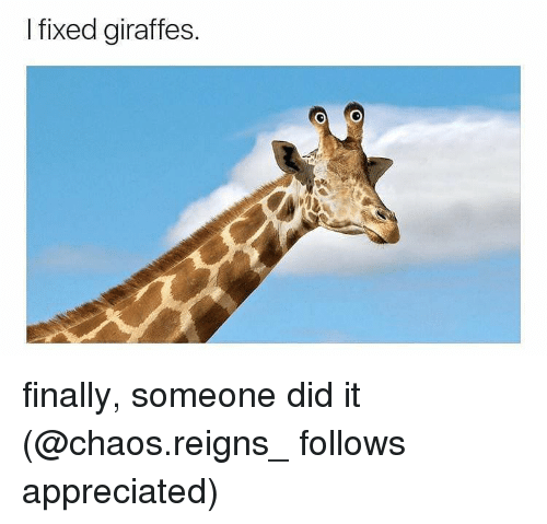 chaos reigns: I fixed giraffes. finally, someone did it (@chaos.reigns_ follows appreciated)