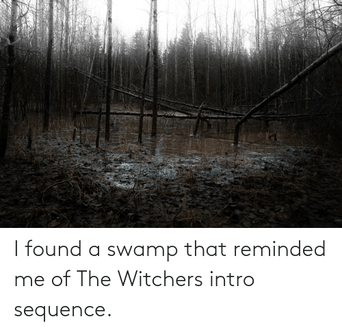 Witchers: I found a swamp that reminded me of The Witchers intro sequence.