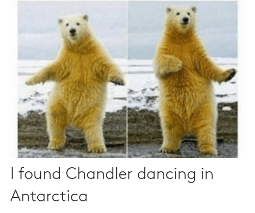 Antarctica: I found Chandler dancing in Antarctica