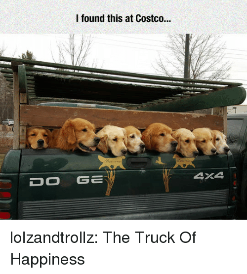 Costco: I found this at Costco.  DOGE  4X4 lolzandtrollz:  The Truck Of Happiness