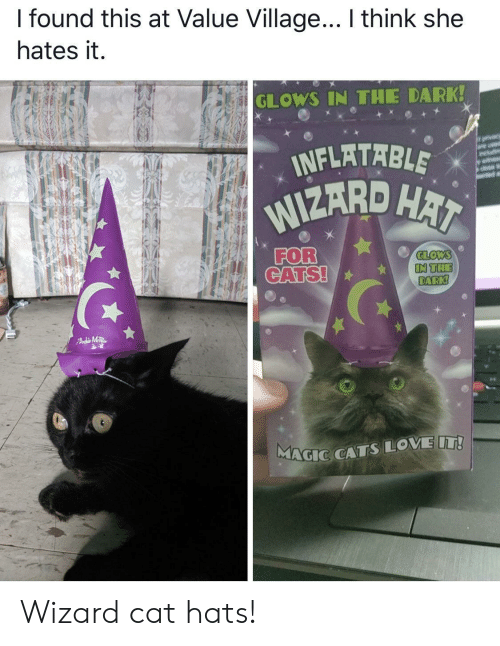 hai: I found this at Value Village... I think she  hates it.  GLOWS IN THE DARK!  INFLATABLE  WIZARD HAI  orvacy  are usd  wit  FOR  CATS!  GLOWS  IN THE  DARK!  FAdMTR  MAGIC CATSLOVE IT! Wizard cat hats!
