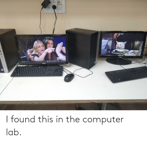 in-the-computer: I found this in the computer lab.