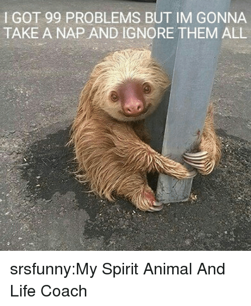 99 Problems, Life, and Tumblr: I GOT 99 PROBLEMS BUT IM GONNA  TAKE A NAP AND IGNORE THEM ALL srsfunny:My Spirit Animal And Life Coach