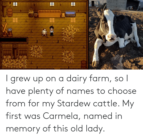 lady: I grew up on a dairy farm, so I have plenty of names to choose from for my Stardew cattle. My first was Carmela, named in memory of this old lady.
