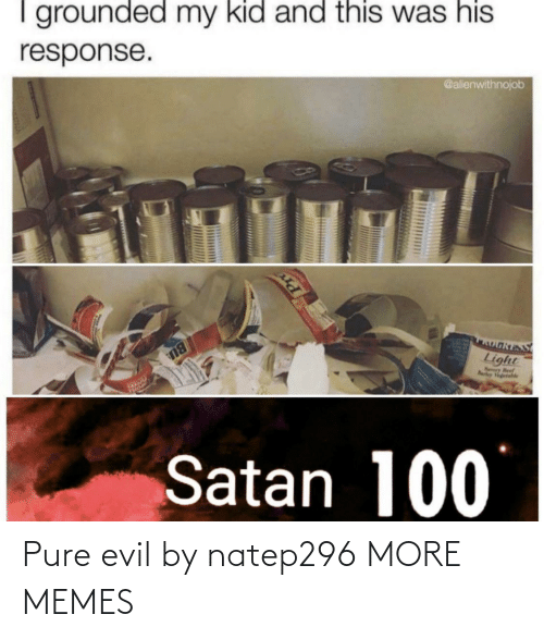 Response: I grounded my kid and this was his  @alienwithnojob  response.  OאוS  Light  Nry Beef  Rarley Vgetahle  BU  Satan 100 Pure evil by natep296 MORE MEMES
