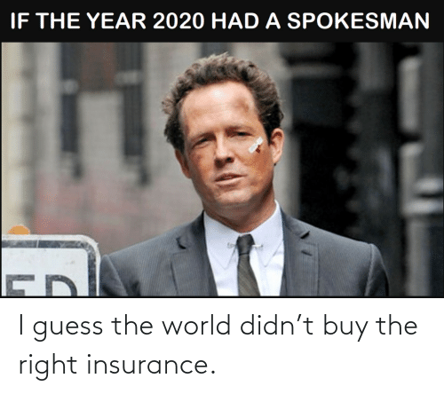 World: I guess the world didn't buy the right insurance.