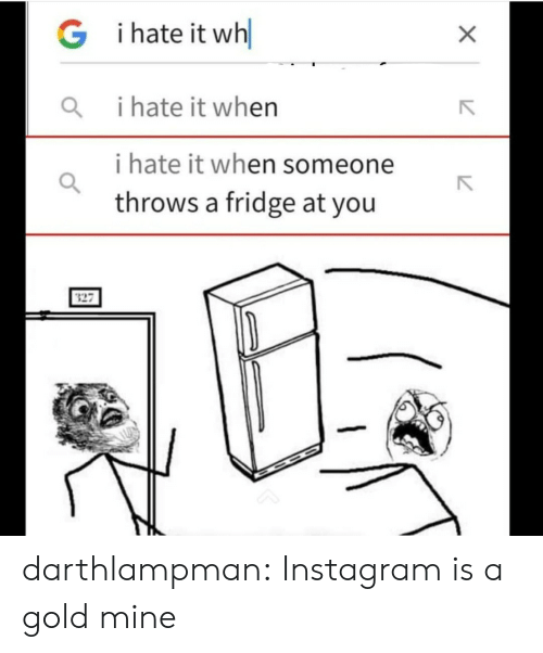 Instagram, Tumblr, and Blog: i hate it wh  G  i hate it when  i hate it when someone  throws a fridge at you  X darthlampman:  Instagram is a gold mine