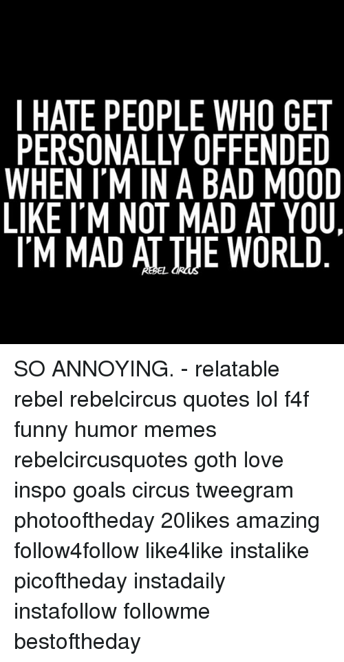 Rebelcircus: I HATE PEOPLE WHO GET  PERSONALLY OFFENDED  WHEN I'M IN A BAD MOOD  LIKE I'M NOT MAD AT YOU.  IM MAD AT THE WORLD SO ANNOYING. - relatable rebel rebelcircus quotes lol f4f funny humor memes rebelcircusquotes goth love inspo goals circus tweegram photooftheday 20likes amazing follow4follow like4like instalike picoftheday instadaily instafollow followme bestoftheday