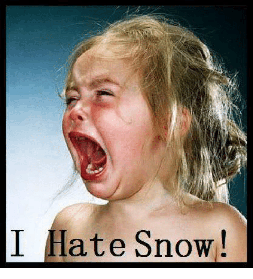 Memes, 🤖, and Hate: I Hate Snow!