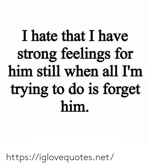 Strong, Net, and Him: I hate that I have  strong feelings for  him still when all I'm  trying to do is forget  him. https://iglovequotes.net/