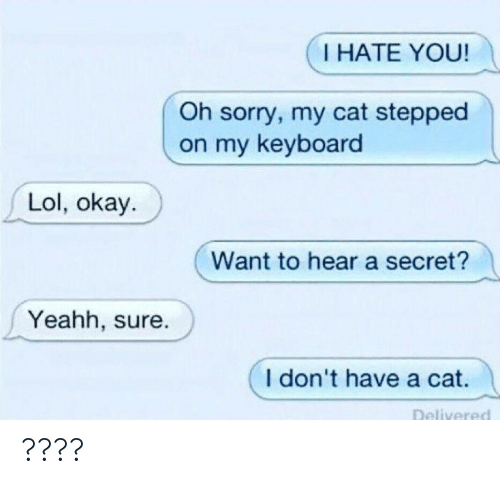 Lol, Sorry, and Keyboard: I HATE YOU!  Oh sorry, my cat stepped  on my keyboard  Lol, okay.  Want to hear a secret?  Yeahh, sure.  I don't have a cat. ????