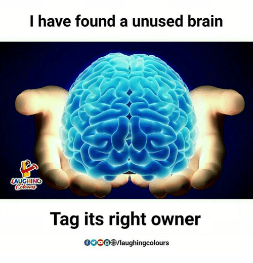 Brains, Brain, and Indianpeoplefacebook: I have found a unused brain  AUGHING  Tag its right owner