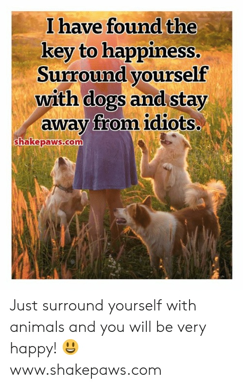 the key: I have found the  key to happiness.  Surround yourself  with dogs and stay  away from idiots..  shakepaws.com Just surround yourself with animals and you will be very happy! 😃 www.shakepaws.com