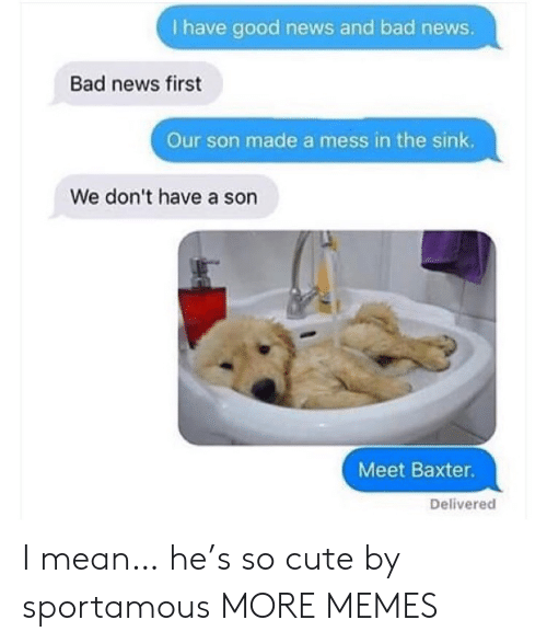 sink: I have good news and bad news.  Bad news first  Our son made a mess in the sink.  We don't have a son  Meet Baxter.  Delivered I mean… he's so cute by sportamous MORE MEMES