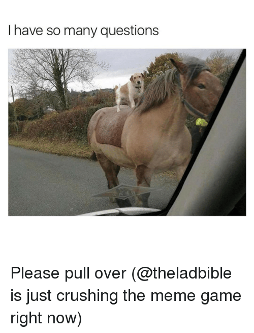 Funny, Right Now, and Right: I have so many questions Please pull over (@theladbible is just crushing the meme game right now)