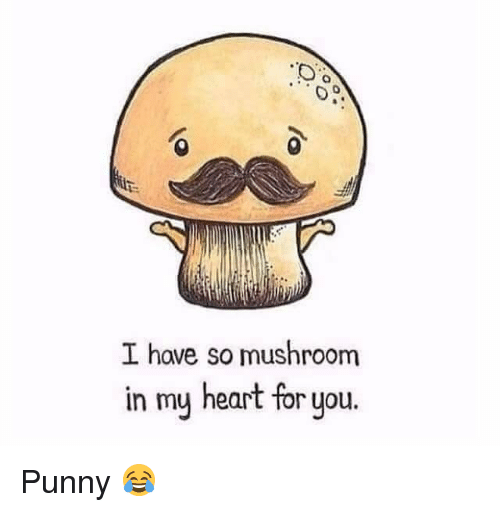 Punnies: I have so mushroom  in my heart for you Punny 😂