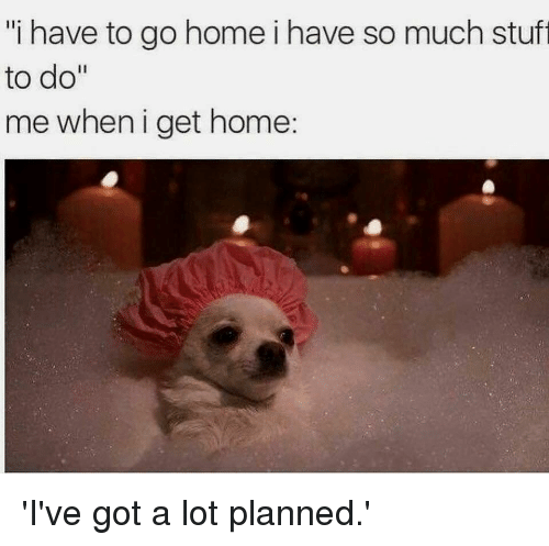 """Gym, Home, and Got: """"i have to go home i have so much stuft  to do""""  me when i get home: 'I've got a lot planned.'"""