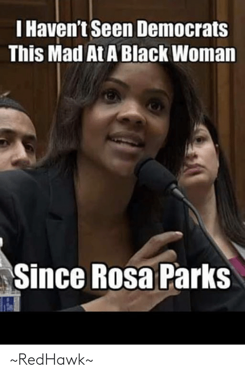Rosa Parks: I Haven't Seen Democrats  This Mad At A Black Woman  Since Rosa Parks ~RedHawk~