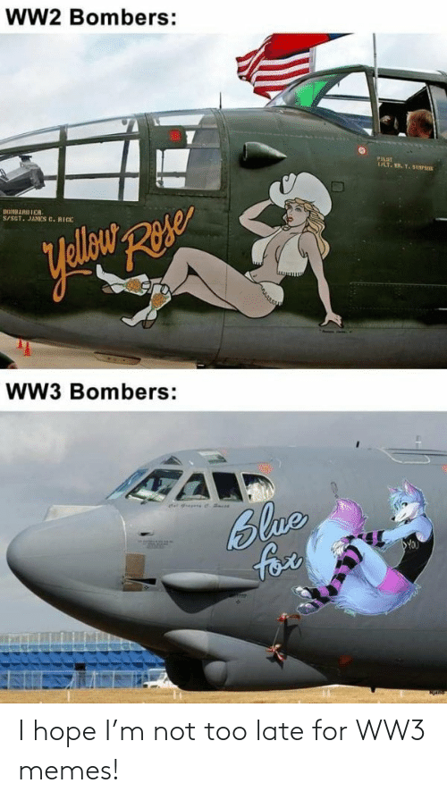 late: I hope I'm not too late for WW3 memes!
