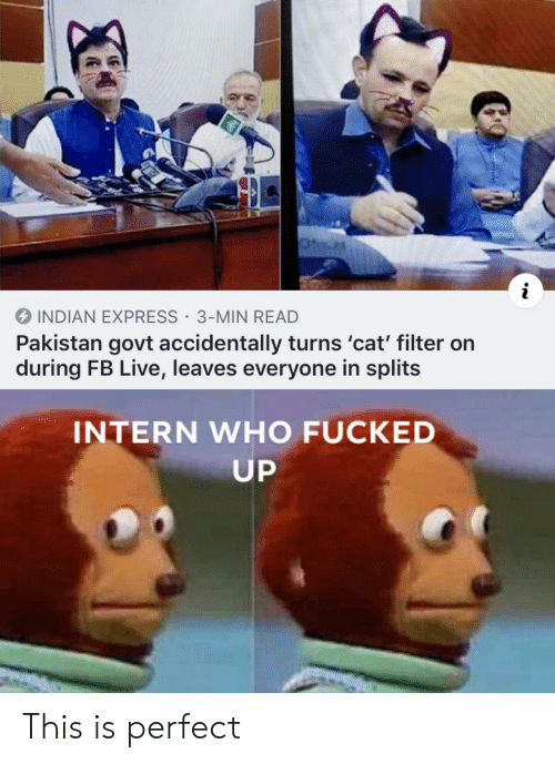 Express, Live, and Pakistan: i  INDIAN EXPRESS 3-MIN READ  Pakistan govt accidentally turns 'cat' filter on  during FB Live, leaves everyone in splits  INTERN WHO FUCKED  UP This is perfect