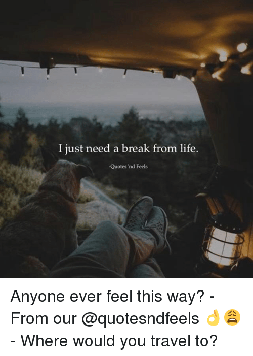 25 Best Memes About Life Quotes Life Quotes Memes