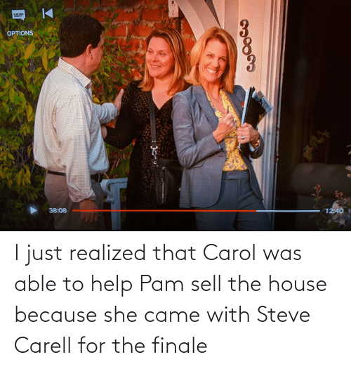 The Office: I just realized that Carol was able to help Pam sell the house because she came with Steve Carell for the finale