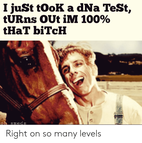 i took a dna test meme