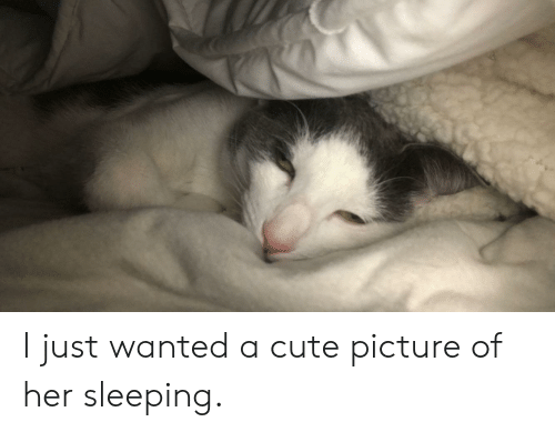 Cute, Sleeping, and Her: I just wanted a cute picture of her sleeping.