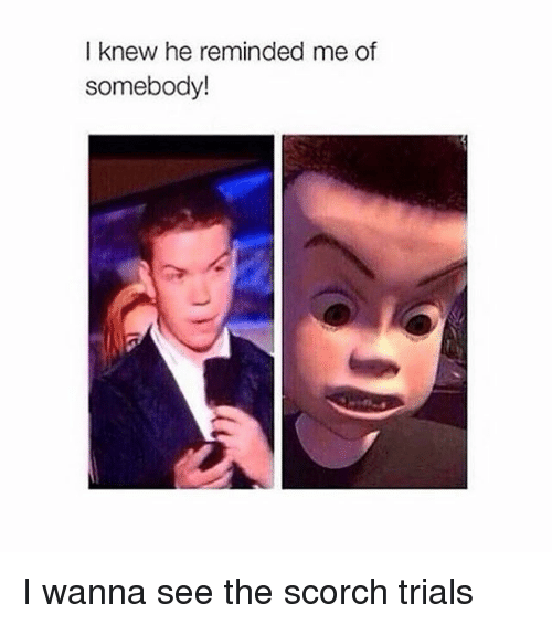 Girl Memes, Scorch Trials, and Scorch: I knew he reminded me of  somebody! I wanna see the scorch trials