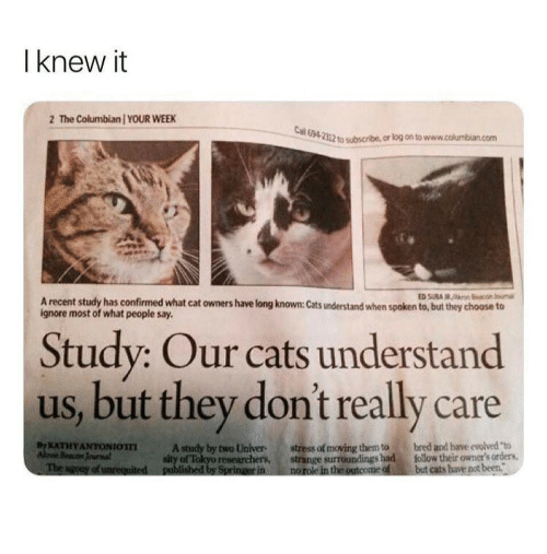 univer: I knew it  2 The Columbian YOUR WEEK  694 2312  to subscribe, or log on to www.columbian.com  A recent study has confirmed what cat owners have long known: Cats understand when spoken to, but they choose t  ignore most of what people say.  Study: Our cats understand  us, but they don't really care  stress of moving them to bred apd have evolved to  but cats aveot been.  XATHY ANTONIOTT  A study by two Univer  af Tokyo researchers, strange surroundings had follow their ownet's orders,
