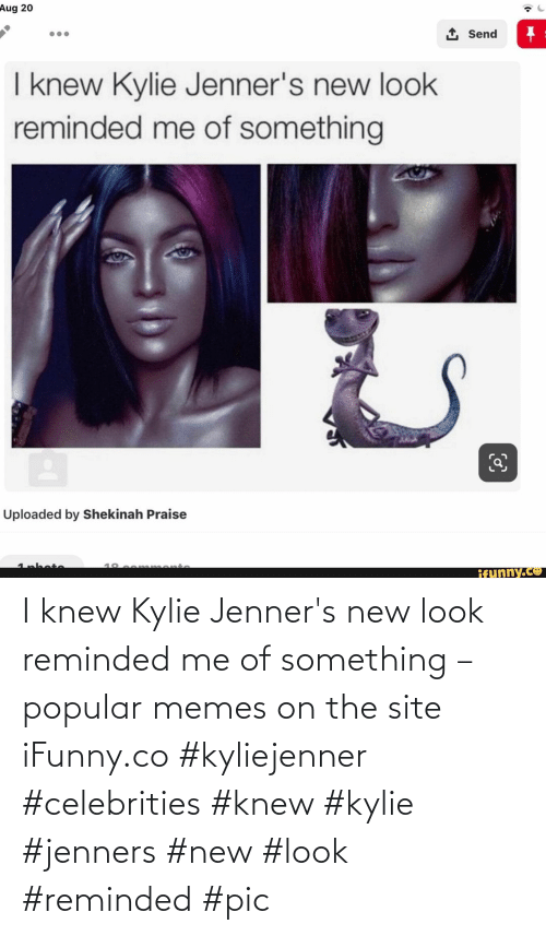 knew: I knew Kylie Jenner's new look reminded me of something – popular memes on the site iFunny.co #kyliejenner #celebrities #knew #kylie #jenners #new #look #reminded #pic