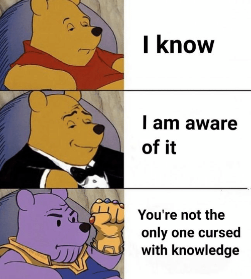 Memes, Knowledge, and Only One: I know  l am aware  of it  You're not the  only one cursed  with knowledge