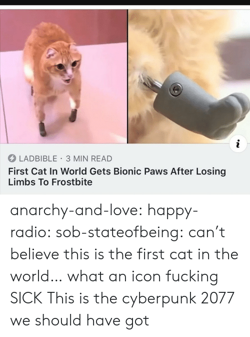 In World: i  LADBIBLE 3 MIN READ  First Cat In World Gets Bionic Paws After Losing  Limbs To Frostbite anarchy-and-love: happy-radio:  sob-stateofbeing: can't believe this is the first cat in the world… what an icon  fucking  SICK   This is the cyberpunk 2077 we should have got