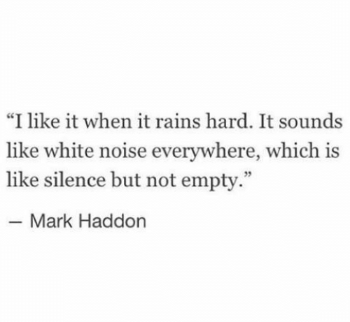 "White, Silence, and White Noise: ""I like it when it rains hard. It sounds  like white noise everywhere, which is  like silence but not empty.""  Mark Haddon"