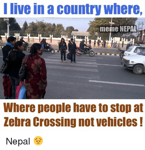 zebra crossing: I live in a country where,  meme NEPAL  Where people have to stop at  Zebra Crossing not vehicles Nepal 😔