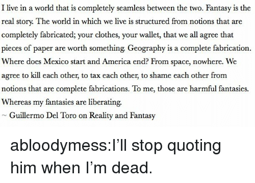 toro: I live in a world that is completely seamless between the two. Fantasy is the  real story. The world in which we live is structured from notions that are  completely fabricated; your clothes, your wallet, that we all agree that  pieces of paper are worth something Geography is a complete fabrication.  Where does Mexico start and America end? From space, nowhere. We  agree to kill each other, to tax each other, to shame each other from  notions that are complete fabrications. To me, those are harmful fantasies.  Whereas my fantasies are liberating.  Guillermo Del Toro on Reality and Fantasy abloodymess:I'll stop quoting him when I'm dead.