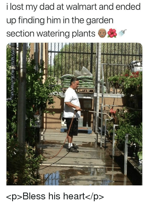 Bless His Heart: i lost my dad at walmart and ended  up finding him in the garden  section watering plants <p>Bless his heart</p>