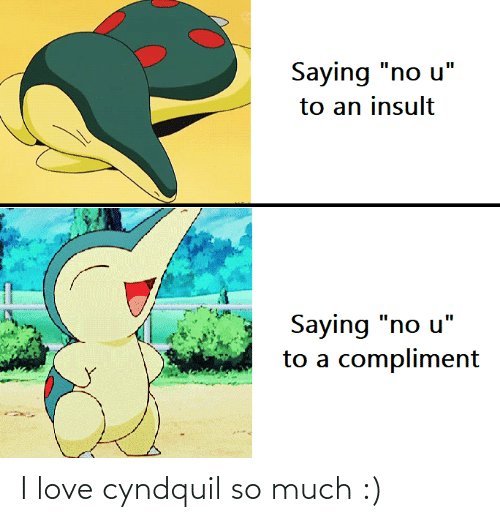 so much: I love cyndquil so much :)