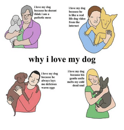 Internet, Lay's, and Life: i love my dog  because he doesnt  think i am a  pathetic mess  i love my dog  because he  is like a real  ·  life dog video  from the  internet  why i love my dog  i love my dog  because his  i love my dog  because he  always lays  me delicious  warm eggs  gentle smile.  melts my cold  dead soul