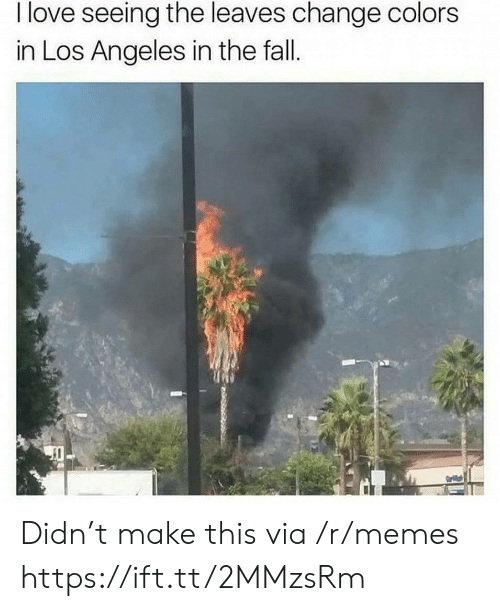 Fall, Love, and Memes: I love seeing the leaves change colors  in Los Angeles in the fall.  Gaial Didn't make this via /r/memes https://ift.tt/2MMzsRm