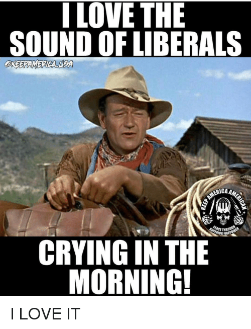 Liberal Crying: I LOVE THE  SOUND OF LIBERALS  CRYING IN THE  MORNING! I LOVE IT
