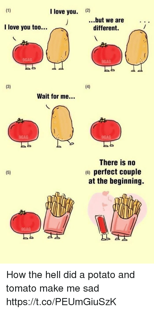 potatoe: I love you.  12)  ..but we are  different.  I love you too..  9GAG  9GAG  Wait for me...  9GAG  9GAG  There is no  6) perfect couple  at the beginning.  9GAG How the hell did a potato and tomato make me sad https://t.co/PEUmGiuSzK