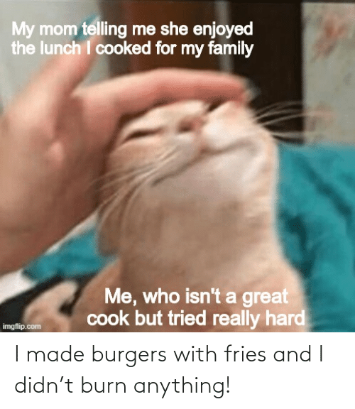 fries: I made burgers with fries and I didn't burn anything!
