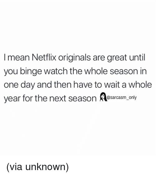 originals: I mean Netflix originals are great until  you binge watch the whole season in  one day and then have to wait a whole  year for the next season es ly  sarcasm on (via unknown)