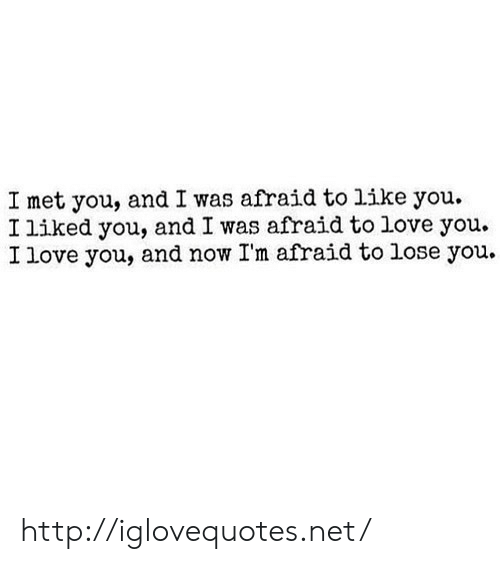 Love, I Love You, and Http: I met you, and I was afraid to like you.  I liked you, and I was afraid to love you.  I love you, and now I'm afraid to lose you. http://iglovequotes.net/
